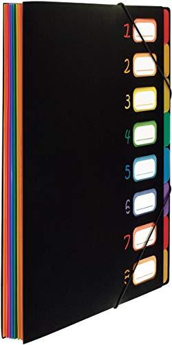 Viquel Rainbow Class - Trieur extensible - Porte document plastique - Organisateur de document - Grande capacité - 8 positions en polypropylène