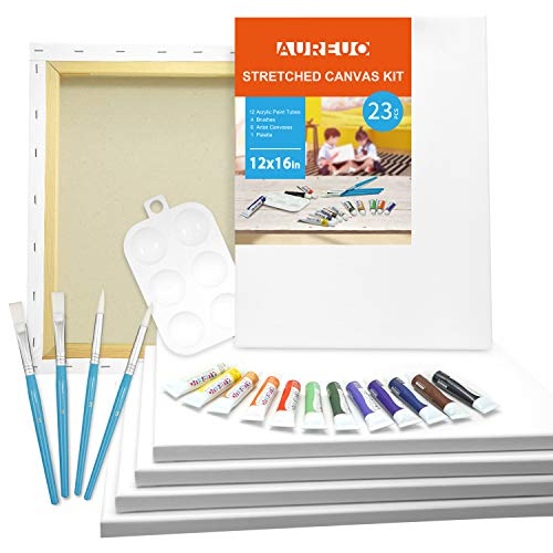 AUREUO 23-Piece Canvas Painting Kit Include 6 Pack 12x16 Inch Stretched Canvas, 12x12ml Acrylic Paints, 4 Paint Brushes, 1 Palette Acrylic Paint Set with Canvas Multipack