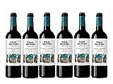 Viñas Del Vero Tinto Cabernet-Merlot - Vino D.O. Somontano - 6 Paquetes de...