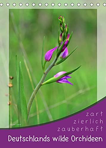Deutschlands wilde Orchideen (Tischkalender 2022 DIN A5 hoch)