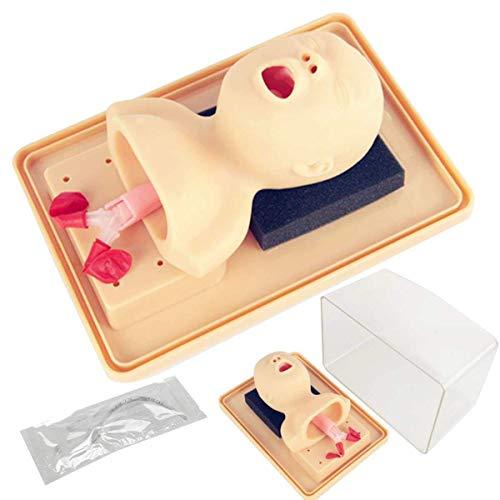 Anatomisches Modell,Anatomisches Modell Puppe Intubation Baby Infante Studie Unterricht Management Modell Atemwegstrainer Modell Unterricht für Schule für Schule