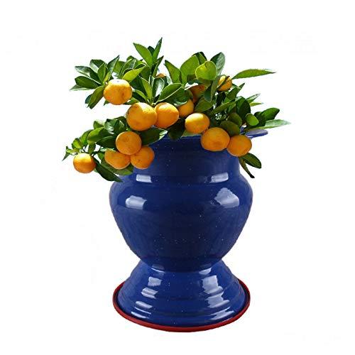 Esmalte Cesta De Frutas Vintage,Clásico Antiguo Pintura Varita Contenedor,Gran Capacidad Grueso Cubo De Hielo Para Decoración De Mesa De Comedor De Cocina Interior Al Aire Libre-Azul y blanco 18.5*22.