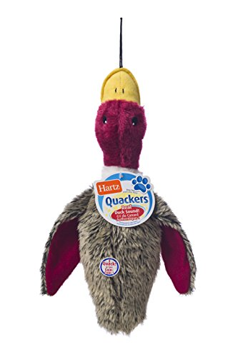 Hartz Nature's Collection Quackers Plush Duck Dog Toy - Large