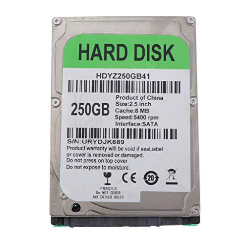 perfk 2,5 Zoll SATA Laptop Notebook Festplatte Harddisk HDD 80GB 120GB 160GB 250GB 320GB, 5400rpm - 250GB