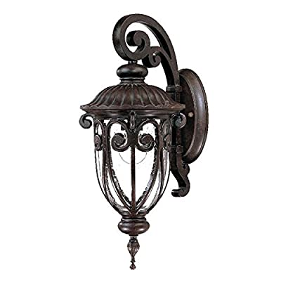Acclaim 2102MM Naples Collection 1-Light Wall Mount Outdoor Light Fixture, Marbleized Mahogany