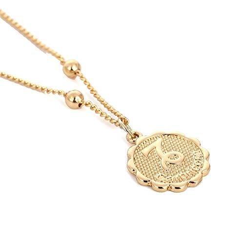 VCX Twaalf sterrenbeelden Coin Ketting Verklaring Copper Leo Hanger Collier Vrouwen sieraden Twaalf horoscoop sleutelbeen keten (Main Stone Color : Gold, Metal Color : Capricorn)