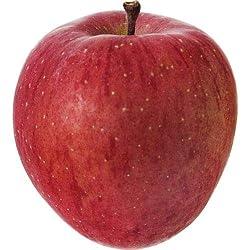 青森産など サンふじりんご1玉