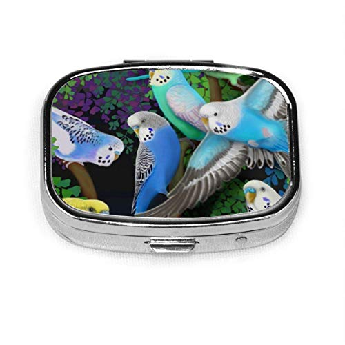Wristband Budgie Parakeets and Ferns Custom Fashion Silver Square Pill Box Medicine Tablet Holder Organizer Case for Pocket or Purse