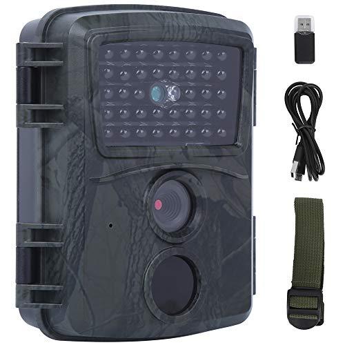 RiToEasysports Cámara de Caza para Exteriores, 1080P Sensores Sensores LED Cámara para Exteriores Alta resolución 0.8s Tiempo de activación Impermeable 8 Meses de Tiempo en Espera