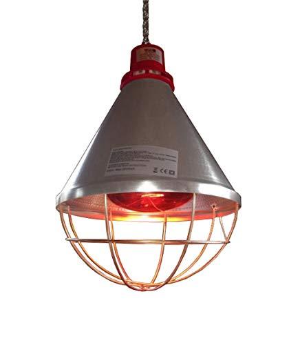 Titan Incubators - Lámpara de calor para aves de corral y bombilla de 250 W