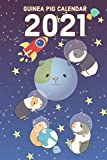 Guinea Pig Calendar 2021: 2021 Calendar Funny Animals With Notes, Perfect as 2021 Diary Planner Monthly, Weekly Agenda With UK/US Holidays
