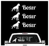 Siviwonder Deutscher Boxer - 3er Set Auto Aufkleber Autoaufkleber Hundemotiv Hundeaufkleber autoaufkleber Hund Folie Aufkleber weiß