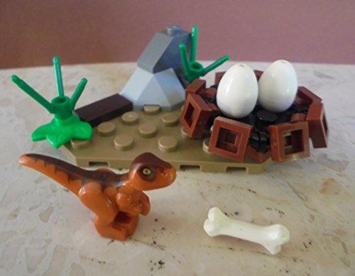 Jurassic World Lego Raptor Baby mit Dinosauriernest und Eiern Polybag Limitiert Neu Ovp