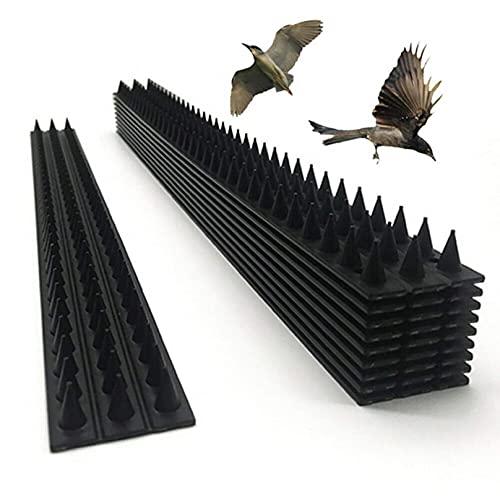 KUANDARGG 10 Piezas Anti Pájaro Thorn Fence Wall Spike Wall Pigeon Disuasor Repelente Bird Fence Gatos Garden Defense Spikes-Pack