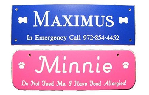 AlphaNumeric Engravers Free Engraving Dog Name Plate Crate Tag Customize Online