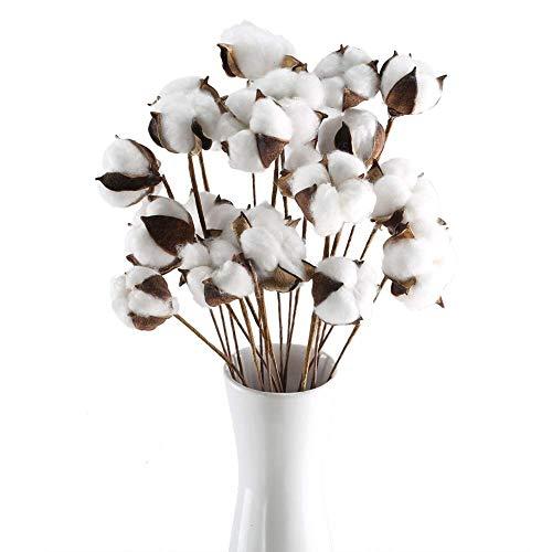 Ruiuzi - Stelo in cotone essiccato naturale con stelo di fiori artificiali, composizioni floreali fai da te, decorazione per la casa e le feste (confezione da 20)