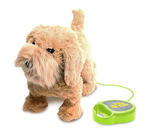 Meva Kids Walking and Barking Puppy Dog Toy Pet with Remote Control Leash (Brown)