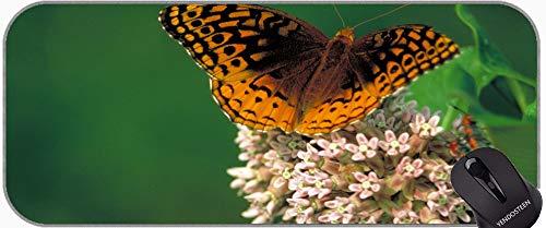 Estera Almohadilla Mat Mat Mouse Alfombrillas De Ratón, Clipper Mariposa Insecto Naturaleza Alas Macro Gran Matería Gaming