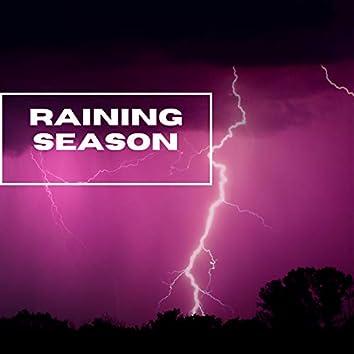 Raining Season - Forest Thunder