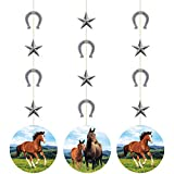 Creative Converting 340096 Wild Horse String Hanging Decoration, Multicolor, 32', 3 Ct.