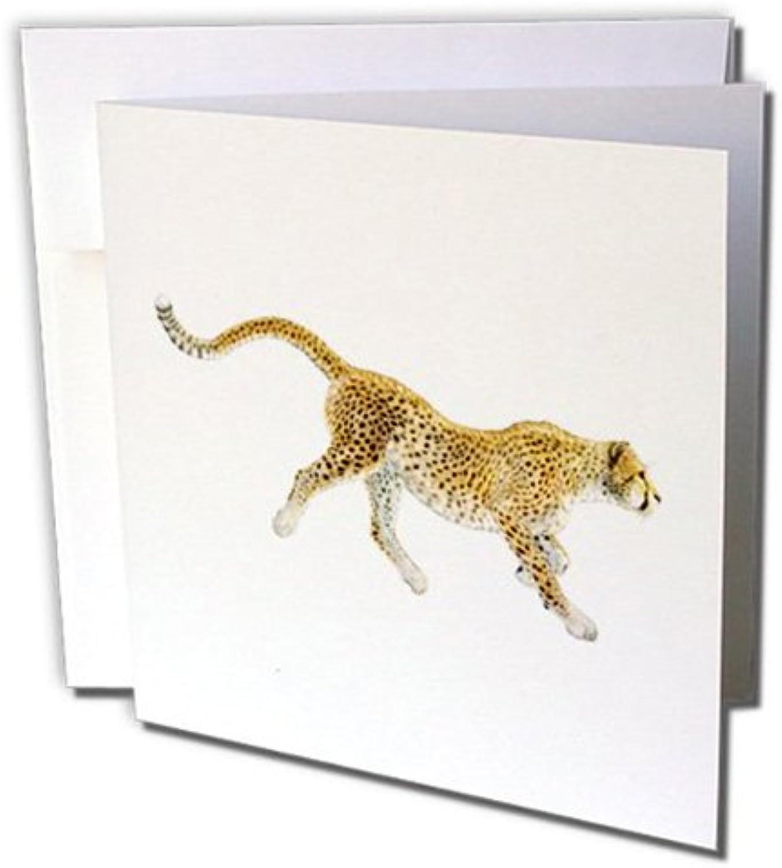 3D Rosa Grußkarten mit Umschlägen Umschlägen Umschlägen – Set 12 Stück Grußkarte (GC 220935 _ 2) B071KTR5NB | Lebhaft und liebenswert  | Online-Exportgeschäft  | Lassen Sie unsere Produkte in die Welt gehen  dd710a