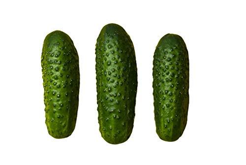 We-Ball Salatgurken und Einlegegurken Samen Delikatess - robust mit mittellangen, festen Früchten - zur Aussaat im Freiland - hoher Ertrag durch häufiges pflücken