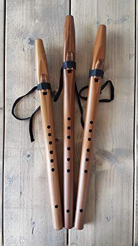 Stellar Flöten Basic Native American Flöte (A, G, F #)–Spanische Zeder A