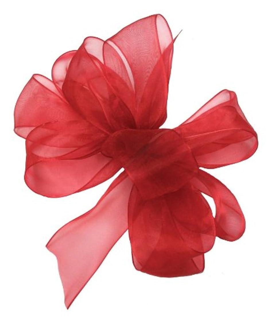Offray Berwick LLC 135822 Berwick Simply Sheer Asiana Ribbon - 7/8