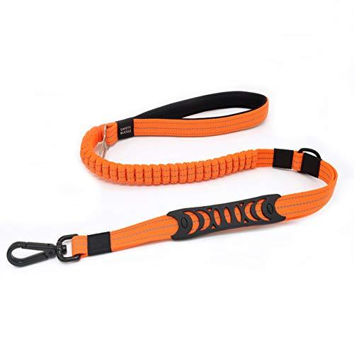 PETTOM Hundeleine Haltbares Nylon Material Hundeleine Reflektierend Elastisch Ruckdämpfer gut für Das Training und mit Schnalle für Auto Sicherheitsgurt