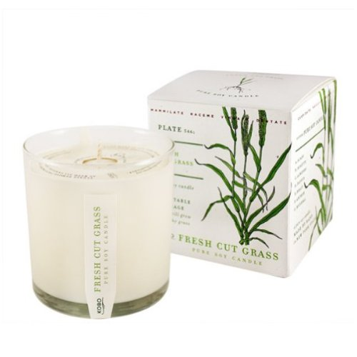 Fresh Cut Grass Soy Candle with Plantable Box