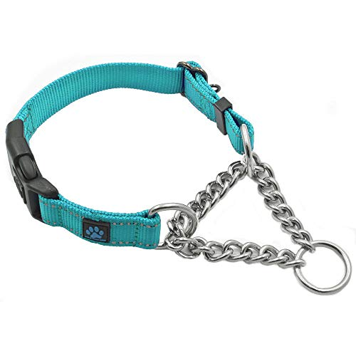 Max and Neo Stainless Steel Chain Martingale Collar - We Donate a Collar to a Dog Rescue for Every Collar Sold (Small, Teal)
