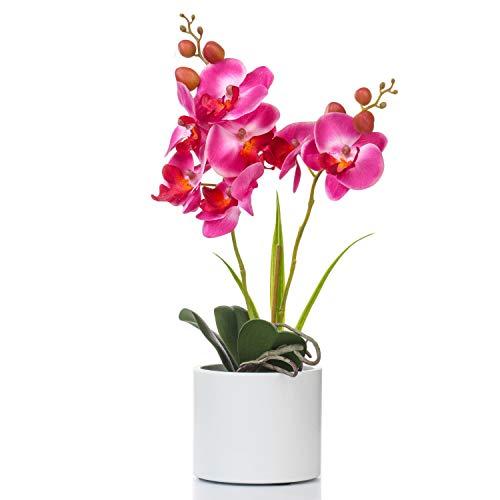 Jusdreen Artificial Flower Bonsai with Vase Vivid Orchid Flower Arrangement Phalaenopsis Flowers Pot for Home Office Décor House Decorations(Purple Orchid)