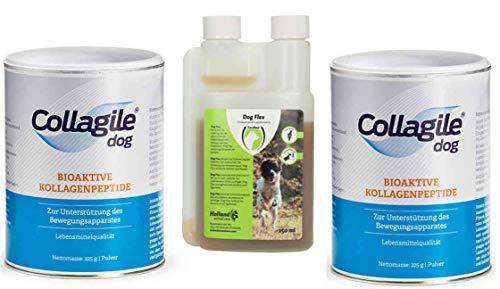 Collagile Dog 2X 225g + Dog Flex 250ml / bei akuten Gelenkbeschwerden