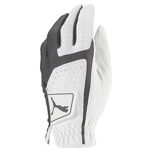 Puma Golf 2018 Men's Flexlite Golf Glove (Bright White-Quiet Shade, Large, Left Hand)