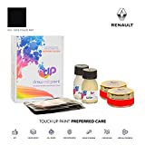 DrawndPaint for/Renault Fuego/Gris Fonce Mat - 619 / Touch-UP Sistema DE Pintura Coincidencia EXACTA/Preferred Care