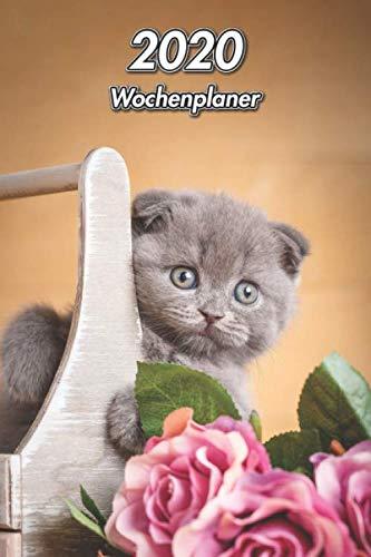 2020 Wochenplaner: Scottish Fold Ketzenwelpe   107 Seiten, 15cm x 23cm ca. A5   Taschenkalender   Terminplaner   Tagebuch   Terminkalender   Organizer für Katzenliebhaber