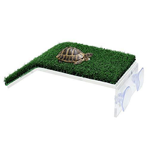 ODOMY Plataforma Tortuga, Flotante Isla Tortuga, Floating Turtle Pier y Basking Platform Decorativos, funcionales y naturalmente inspirados para animales semillas acuáticas (19 x 12 x 4,5 cm)