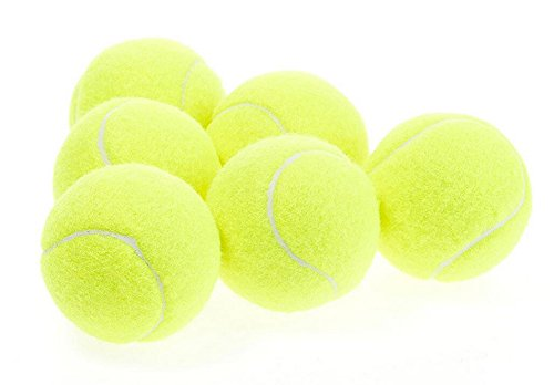 Fablcrew Pelota de tenis suelta para entrenamiento profesional, 20 unidades