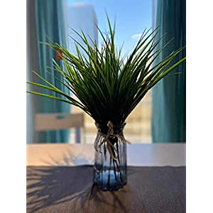 TrePietre Artificial Outdoor Plants Plastic Wheat Grass Greenery Shrubs Decor 6 PCS UV Resistant Shrubs for Outdoor Home Garden Festival Decoration (Green-Wheat Grass)