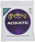 Martin M200 Silk & Steel 12-String Folk Guitar Strings, Extra Light