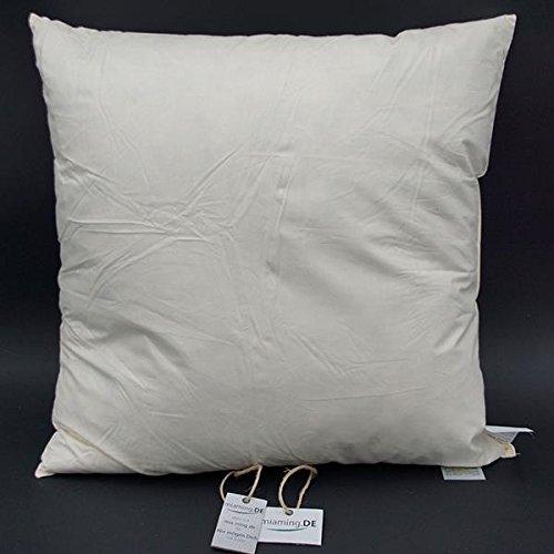 miaming.DE 2 er Set W-Basic 60x60cm SOFAKISSENFÜLLUNG (fest & flauschig) Premium Kissen Inletts (+Gratis Pflege
