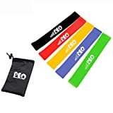 Resistance Loop Bands, Exercise Bands, Stretching, Strength Training, Physical Therapy, Workout Bands, Pilates Flexbands for Home Fitness, Set of 5