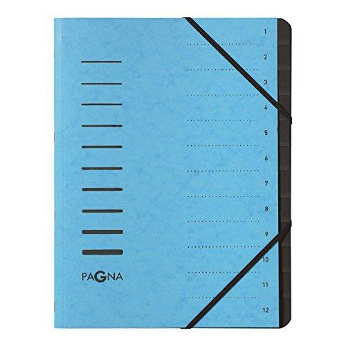 Preisvergleich Produktbild Pagna 40059-18 Ordnungsmappe 12 Fächer