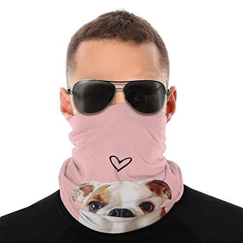 Mens Womens Unisex Winter Neck Gaiter Cover for Cycling UV Protection Outdoor Sport, Sunscreen Neck Warmer - Pug Dog Pink Shield Scarf Breathable Headwear