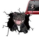 QQSA Aufkleber Auto Hund, 3D Hund Aufkleber, 3D Aufkleber Auto Hund, Hunde Knacken Autoaufkleber, Französische Bulldogge Hunde Aufkleber (B)
