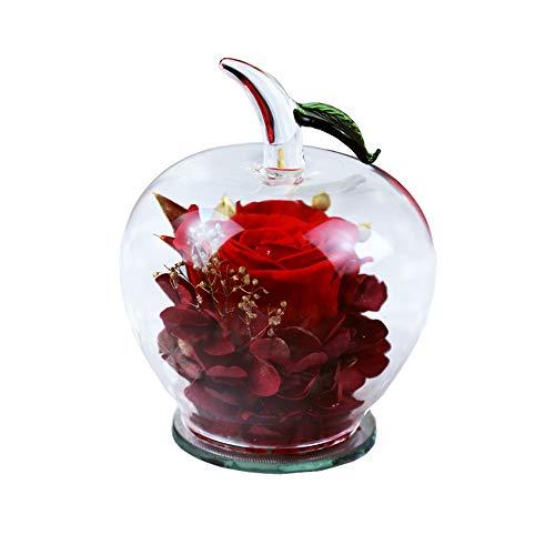 JWShang Preservado Rose Decor Preservado Flor Regalo con Forma de Manzana Cristal, Regalo para el Día de San Valentín, Día de la Madre, Navidad, Aniversario, cumpleaños, Acción de Gracias Niñas