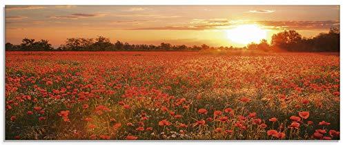 Artland Glasbilder Wandbild Glas Bild einteilig 125x50 cm Querformat Natur Landschaft Blumen Mohnblumen Feld Sonnenuntergang Blumewiese S6AM