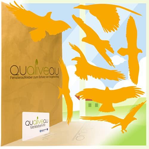 Qualiveau® 40cm Große Aufkleber zum Schutz vor Vogelschlag | Komplettset mit Rakel (Orange)