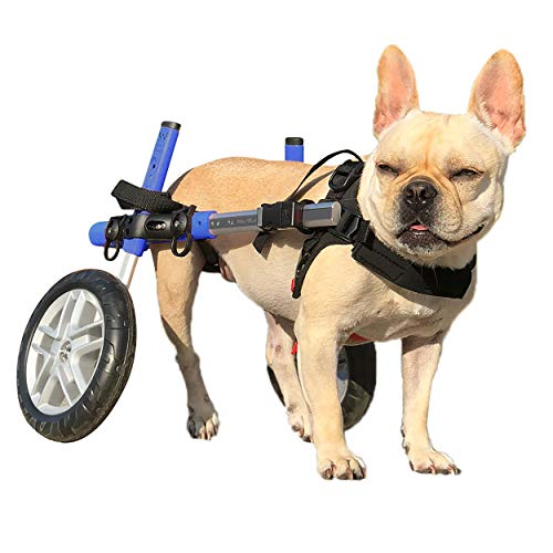 Walkin' Wheels Dog Wheelchair for Small Dogs