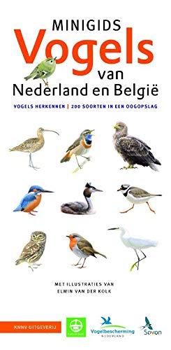 Minigids Vogels van Nederland en België: Vogels herkennen, 200 soorten in een oogopslag
